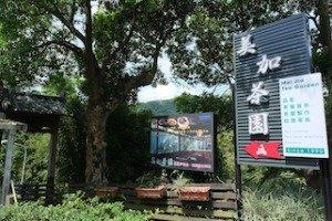 Mei-Jia Tea Garden