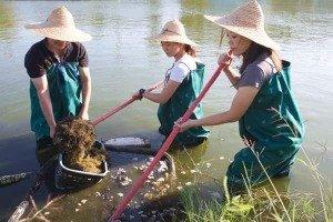 Xianghe Leisure Fishing Farm