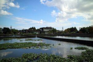 Heng Yang Farm
